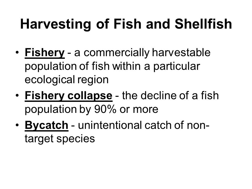 Harvesting of Fish and Shellfish Fishery - a commercially harvestable population of fish within a particular ecological region Fishery collapse - the decline of a fish population by 90% or more Bycatch - unintentional catch of non- target species