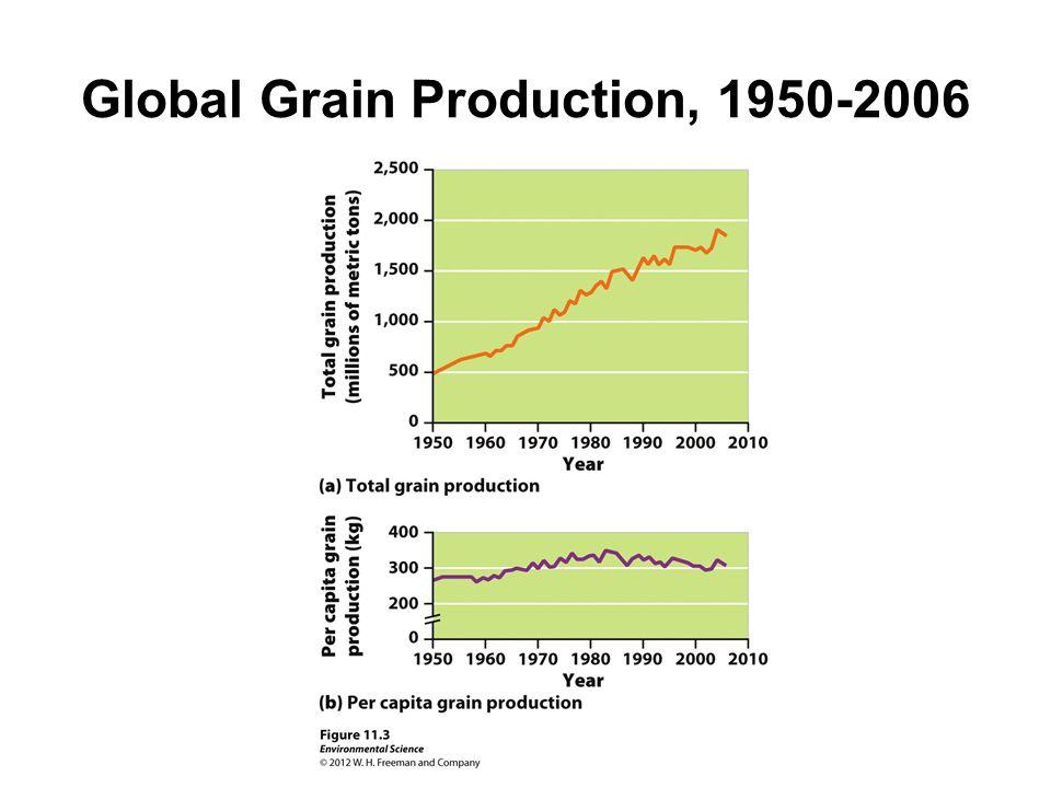 Global Grain Production, 1950-2006