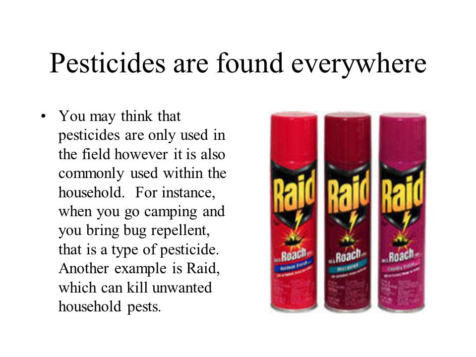 Pesticides are found everywhere You may think that pesticides are only used in the field however it is also commonly used within the household. For in