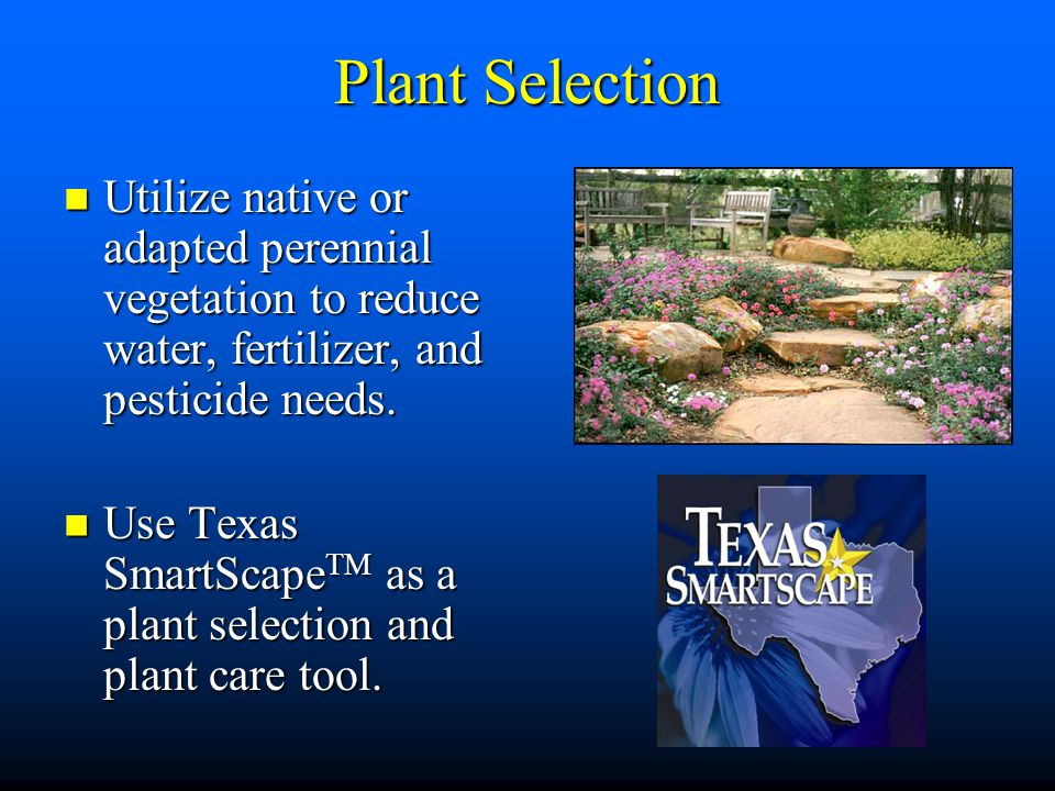 Plant Selection Utilize native or adapted perennial vegetation to reduce water, fertilizer, and pesticide needs.