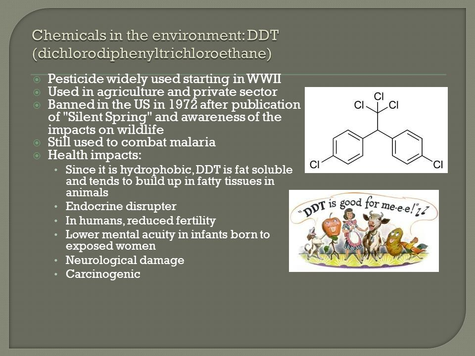  Pesticide widely used starting in WWII  Used in agriculture and private sector  Banned in the US in 1972 after publication of Silent Spring and awareness of the impacts on wildlife  Still used to combat malaria  Health impacts: Since it is hydrophobic, DDT is fat soluble and tends to build up in fatty tissues in animals Endocrine disrupter In humans, reduced fertility Lower mental acuity in infants born to exposed women Neurological damage Carcinogenic