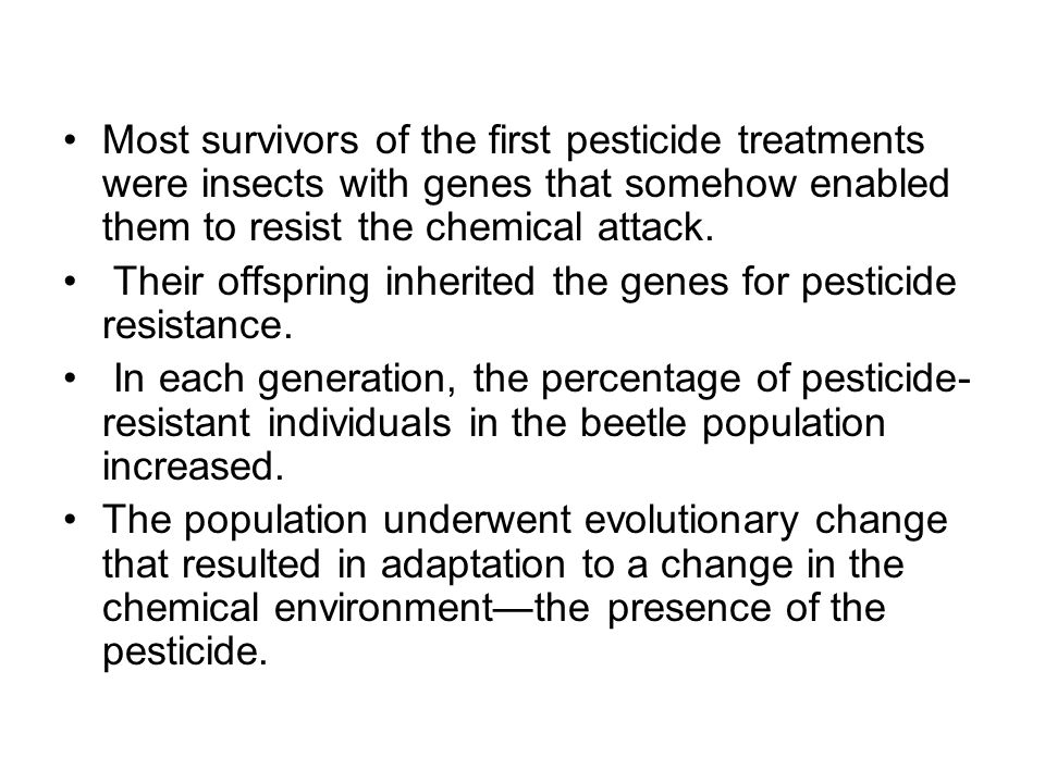 Most survivors of the first pesticide treatments were insects with genes that somehow enabled them to resist the chemical attack. Their offspring inhe