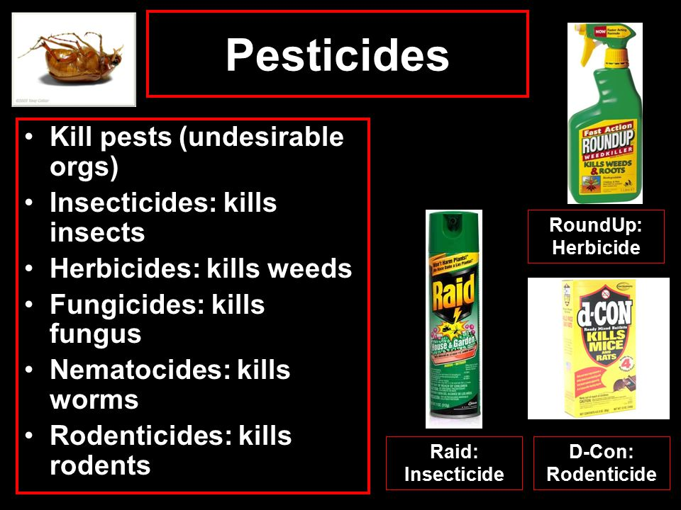 Type: Organophosphates Malathion: Insecticide Used to combat Med.