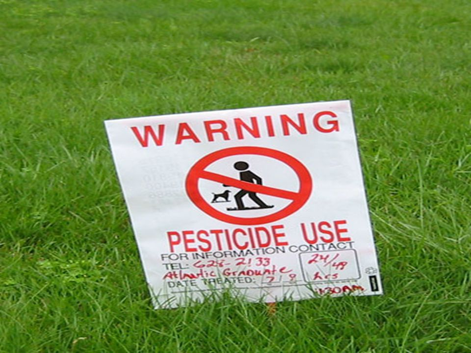 Why Use Pesticides? 2) Increases food supplies 3) Increase money profits for farmers.