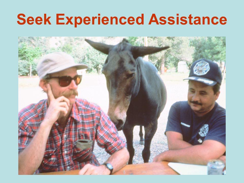 Seek Experienced Assistance