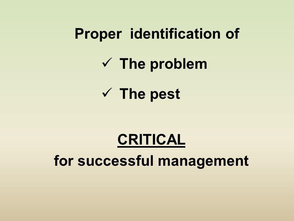Proper identification of The problem The pest CRITICAL for successful management