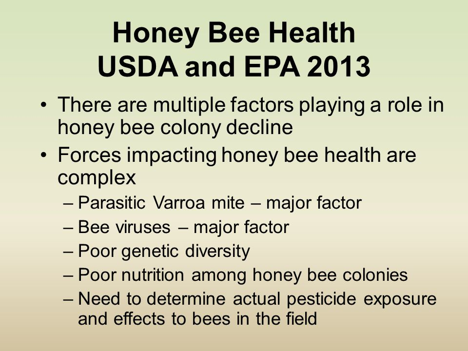 Honey Bee Health USDA and EPA 2013 There are multiple factors playing a role in honey bee colony decline Forces impacting honey bee health are complex –Parasitic Varroa mite – major factor –Bee viruses – major factor –Poor genetic diversity –Poor nutrition among honey bee colonies –Need to determine actual pesticide exposure and effects to bees in the field