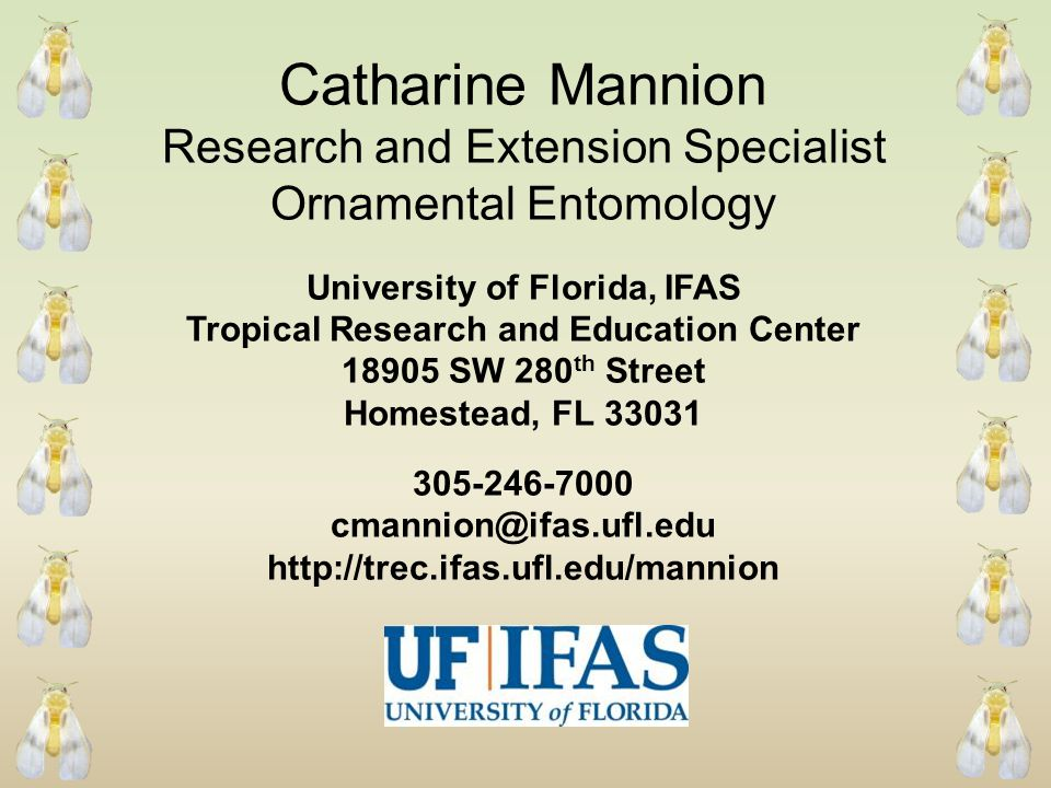 Catharine Mannion Research and Extension Specialist Ornamental Entomology University of Florida, IFAS Tropical Research and Education Center 18905 SW 280 th Street Homestead, FL 33031 305-246-7000 cmannion@ifas.ufl.edu http://trec.ifas.ufl.edu/mannion