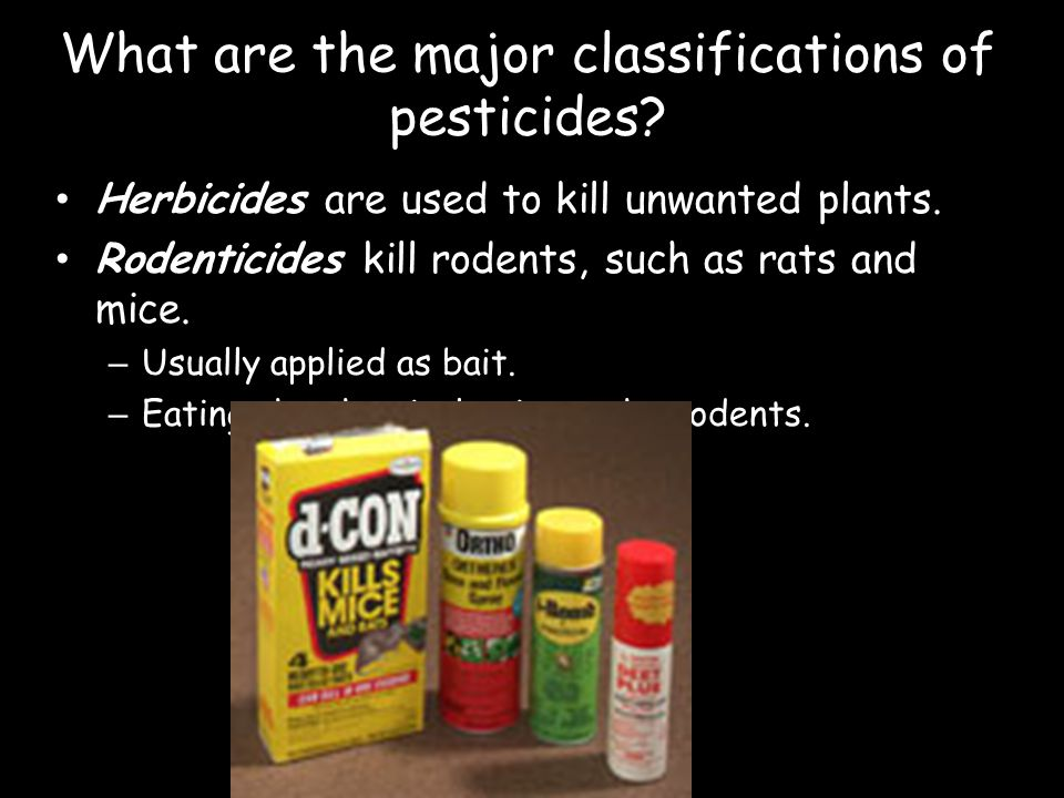 What are the major classifications of pesticides? Herbicides are used to kill unwanted plants. Rodenticides kill rodents, such as rats and mice. – Usu