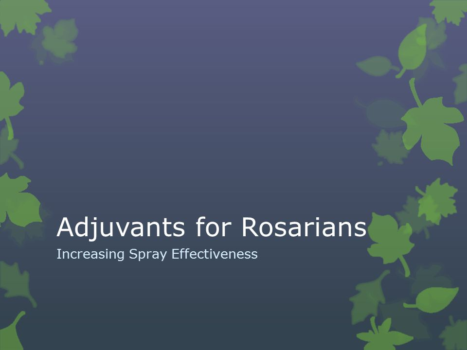 Adjuvants for Rosarians Increasing Spray Effectiveness