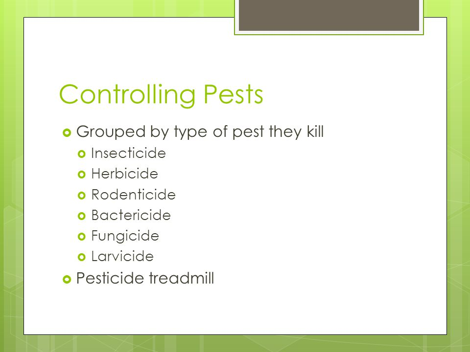 Controlling Pests  Grouped by type of pest they kill  Insecticide  Herbicide  Rodenticide  Bactericide  Fungicide  Larvicide  Pesticide treadmill