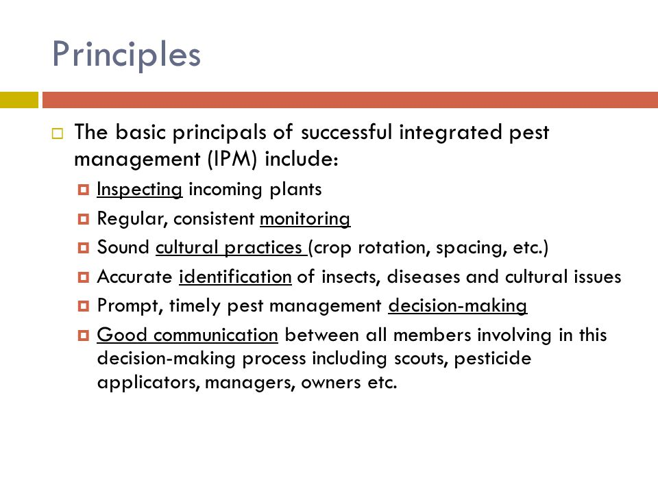 Principles  The basic principals of successful integrated pest management (IPM) include:  Inspecting incoming plants  Regular, consistent monitorin