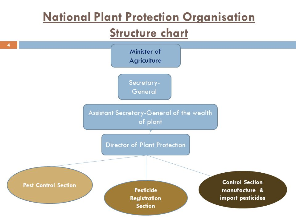 4 National Plant Protection Organisation Structure chart Minister of Agriculture Secretary- General Assistant Secretary-General of the wealth of plant