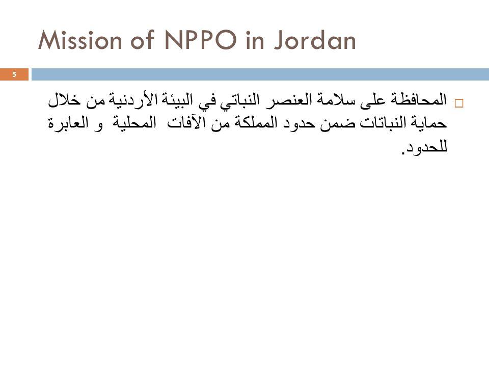 Mission of NPPO in Jordan 5  المحافظة على سلامة العنصر النباتي في البيئة الأردنية من خلال حماية النباتات ضمن حدود المملكة من الآفات المحلية و العابرة