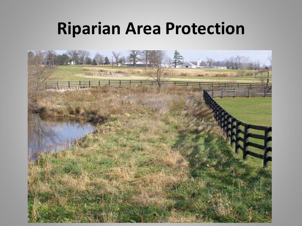 Riparian Area Protection
