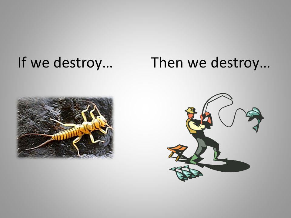 Then we destroy…If we destroy…