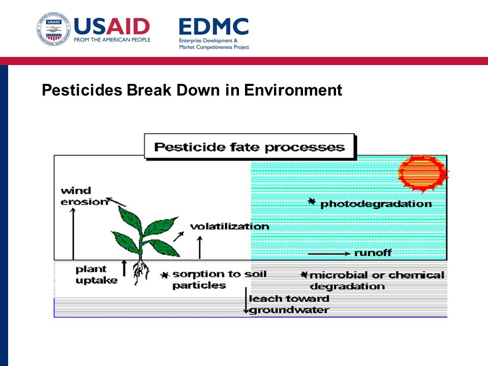 Pesticides Break Down in Environment