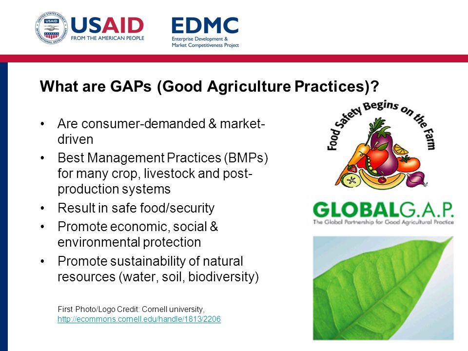 What are GAPs (Good Agriculture Practices).