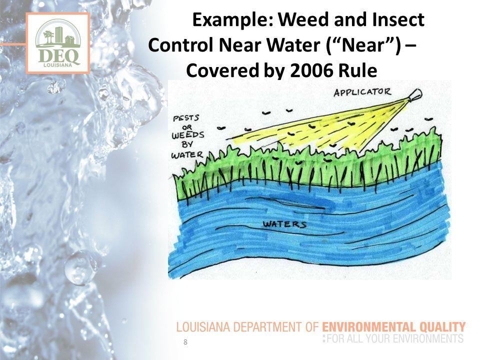 Example: Weed and Insect Control Near Water ( Near ) – Covered by 2006 Rule 8