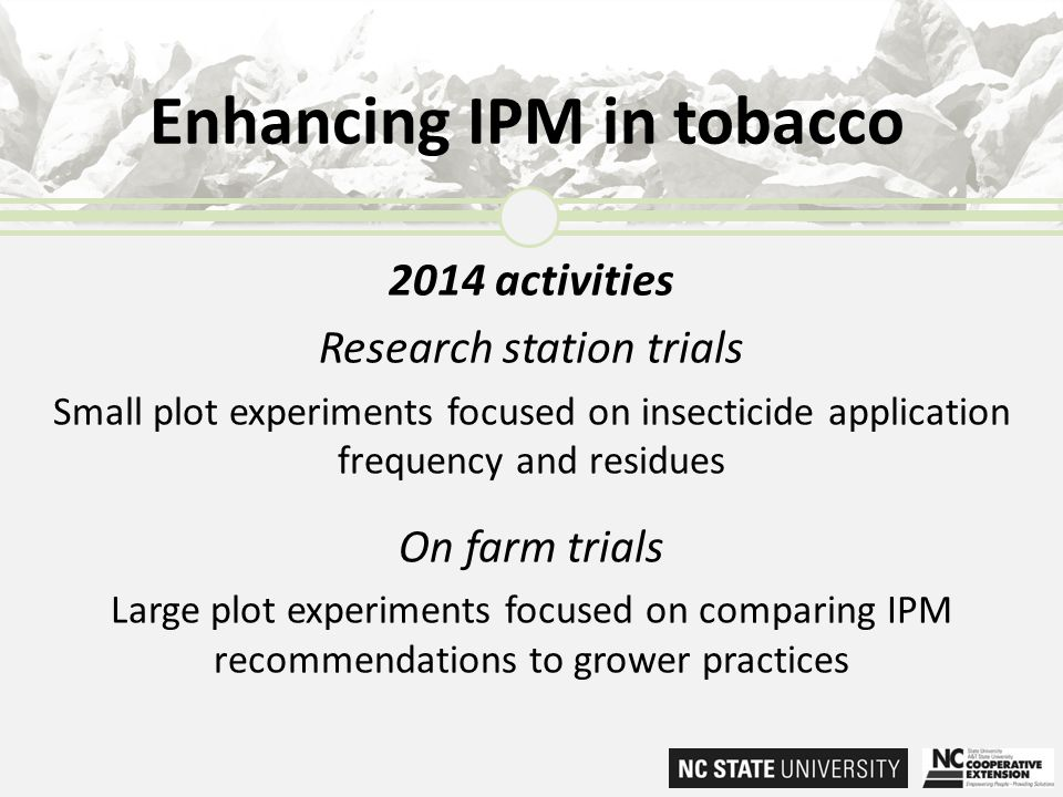 2014 activities Research station trials Small plot experiments focused on insecticide application frequency and residues On farm trials Large plot exp
