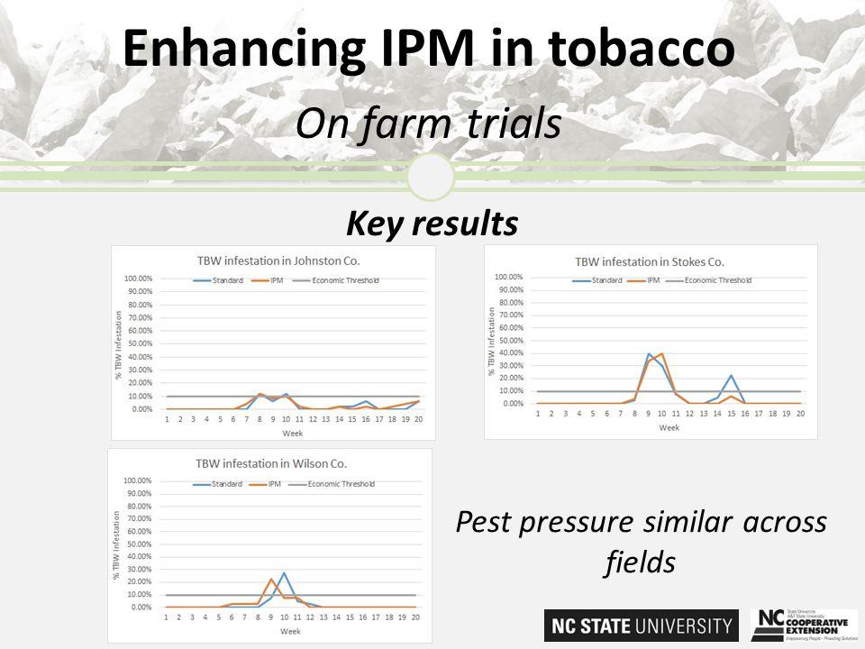 Enhancing IPM in tobacco On farm trials Key results Pest pressure similar across fields