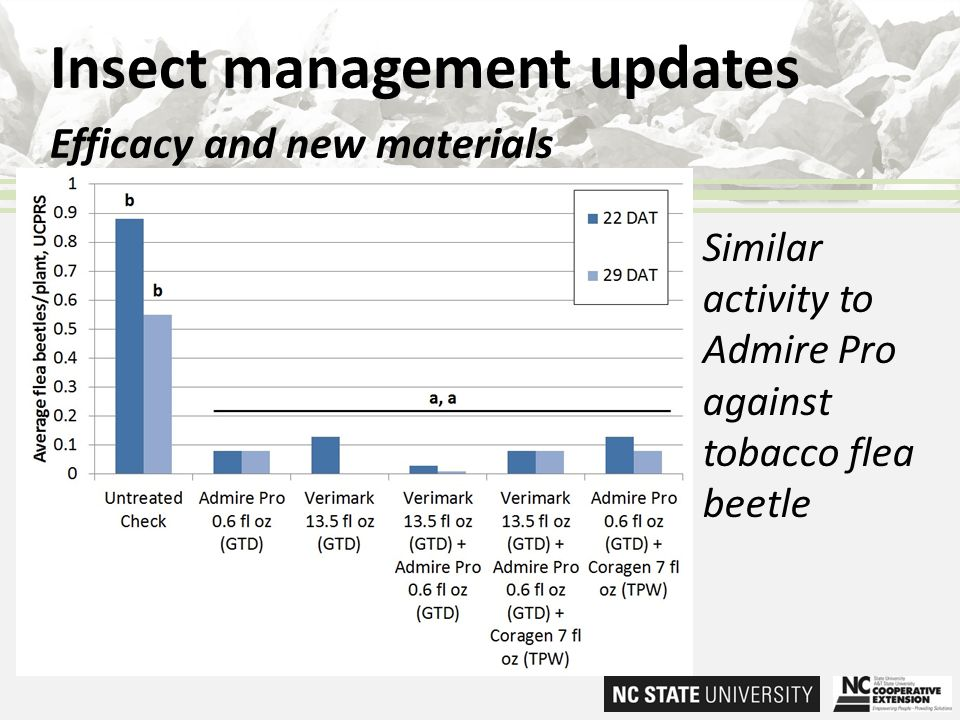 Insect management updates Efficacy and new materials Similar activity to Admire Pro against tobacco flea beetle