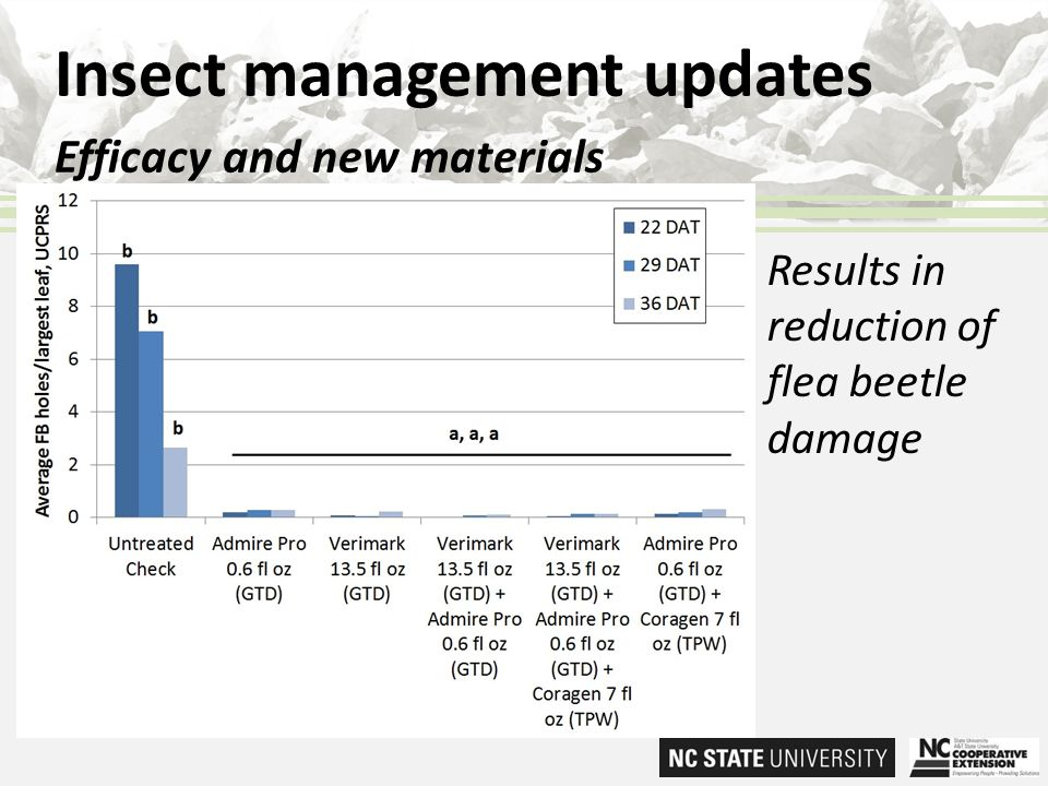 Insect management updates Efficacy and new materials Results in reduction of flea beetle damage
