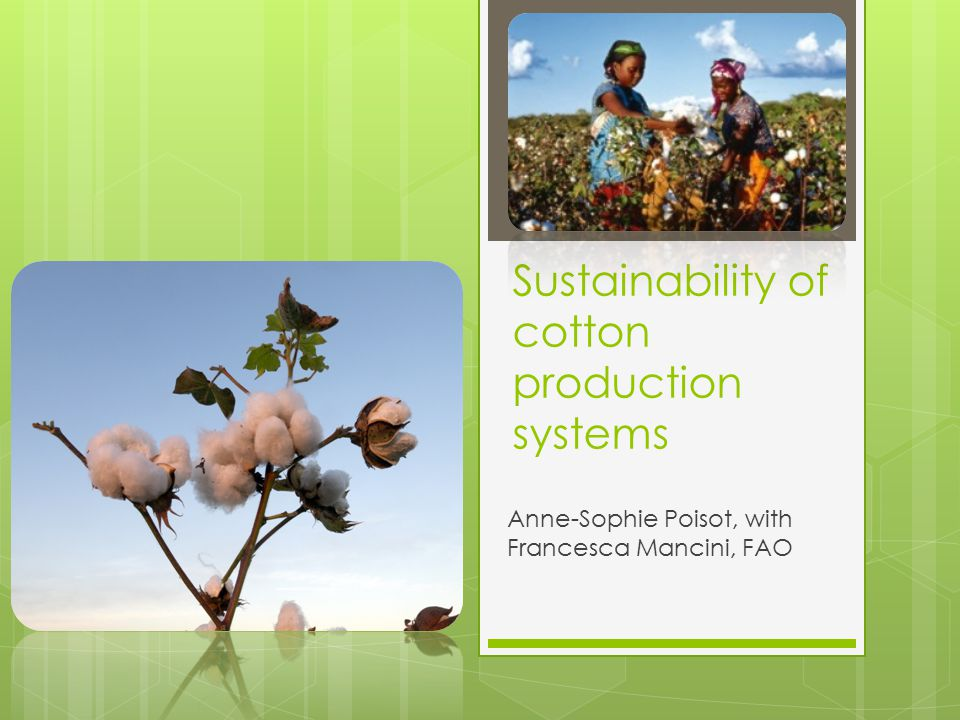 Cotton production  Over 100 million cotton farm families across 75 countries, USD 51.4 billion annually in raw product.