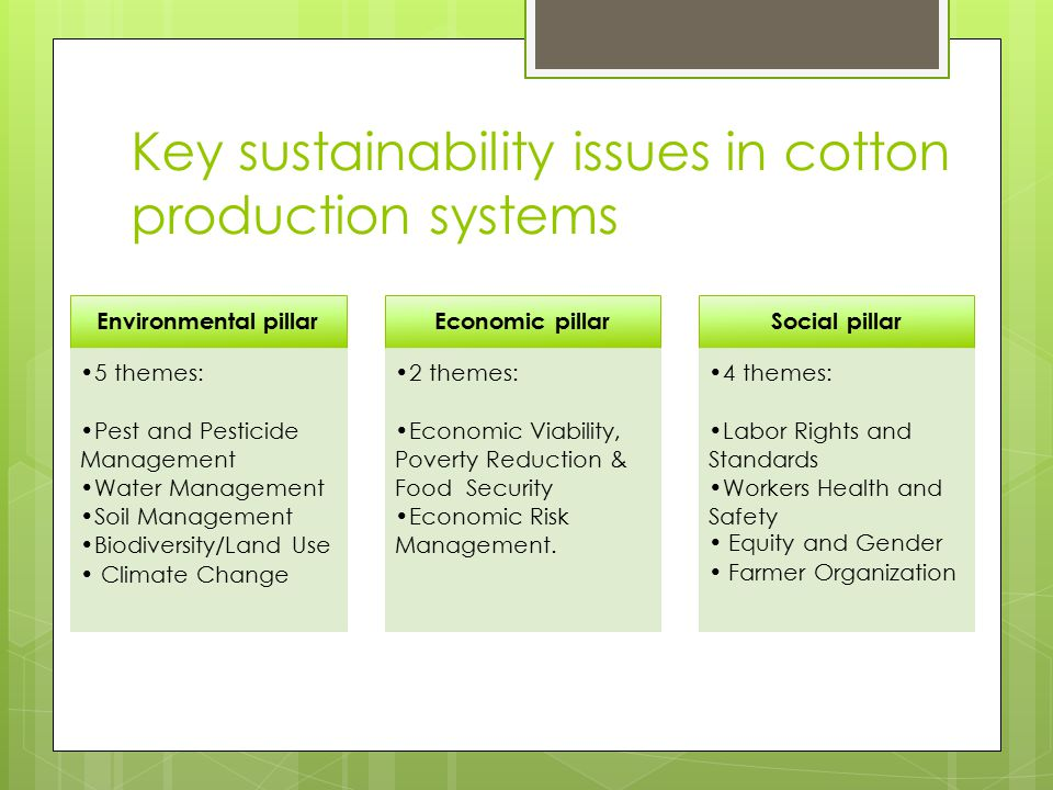 Summary of key issues  Stable global land use & increasing yields in major cotton producing regions (except in West /Southern Africa) suggest increased efficiency  But remains an input-intensive commodity (energy, water, fertilizers, pesticides)  New production practices/technologies offer real opportunities for improving environmental and social impacts  Managing adoption of such innovations will require continued investment in research and farmer education