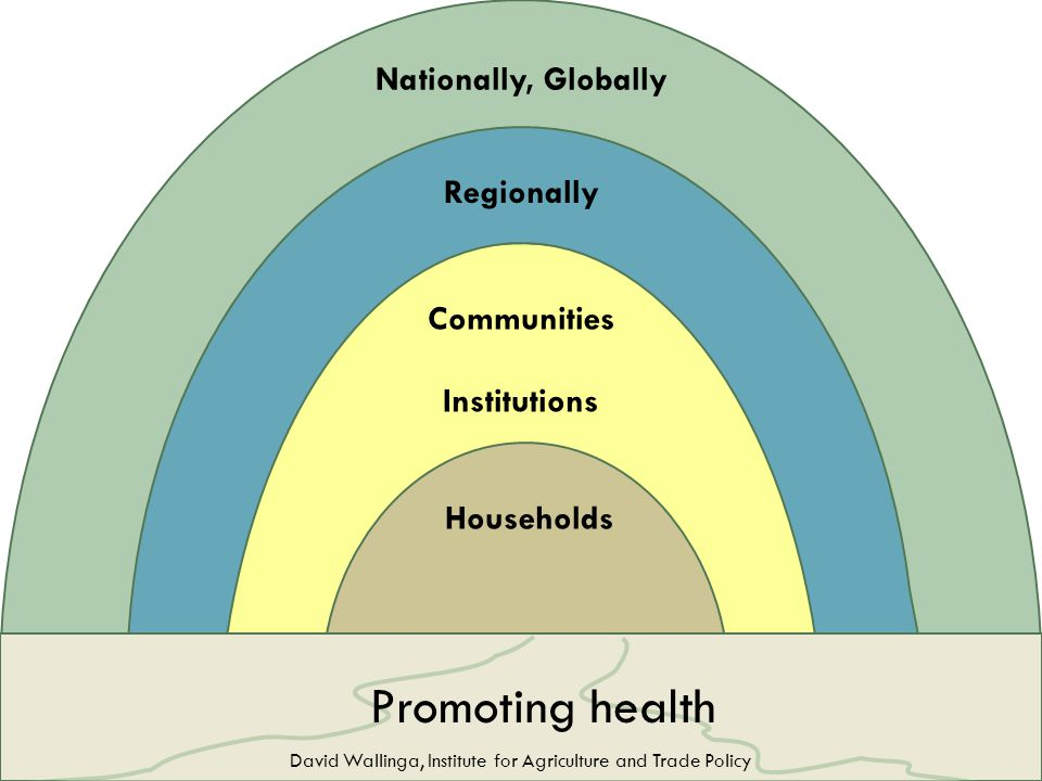 Promoting health Households Institutions Communities Regionally Nationally, Globally David Wallinga, Institute for Agriculture and Trade Policy