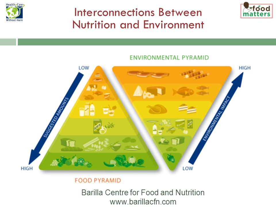 Interconnections Between Nutrition and Environment Barilla Centre for Food and Nutrition www.barillacfn.com