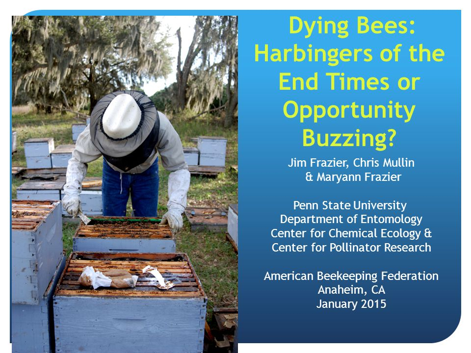 Dying Bees: Harbingers of the End Times or Opportunity Buzzing? Jim Frazier, Chris Mullin & Maryann Frazier Penn State University Department of Entomo