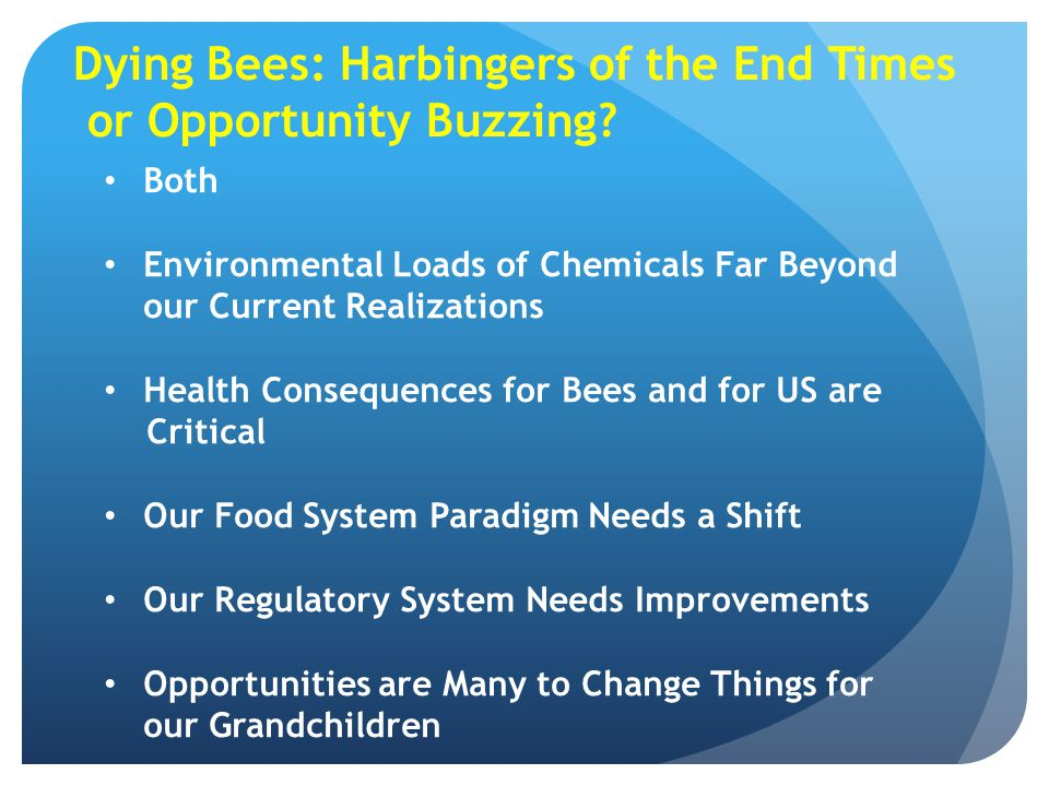 Dying Bees: Harbingers of the End Times or Opportunity Buzzing? Both Environmental Loads of Chemicals Far Beyond our Current Realizations Health Conse
