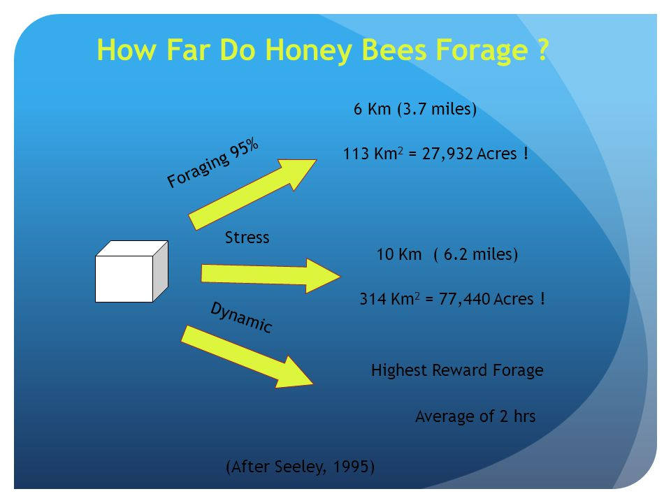 6 Km (3.7 miles) Foraging 95% 113 Km 2 = 27,932 Acres ! 10 Km ( 6.2 miles) 314 Km 2 = 77,440 Acres ! Highest Reward Forage Average of 2 hrs Stress Dyn