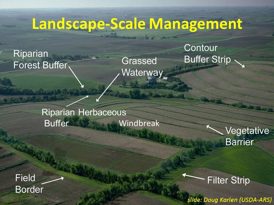 Windbreak Landscape-Scale Management Riparian Herbaceous Buffer slide: Doug Karlen (USDA-ARS)