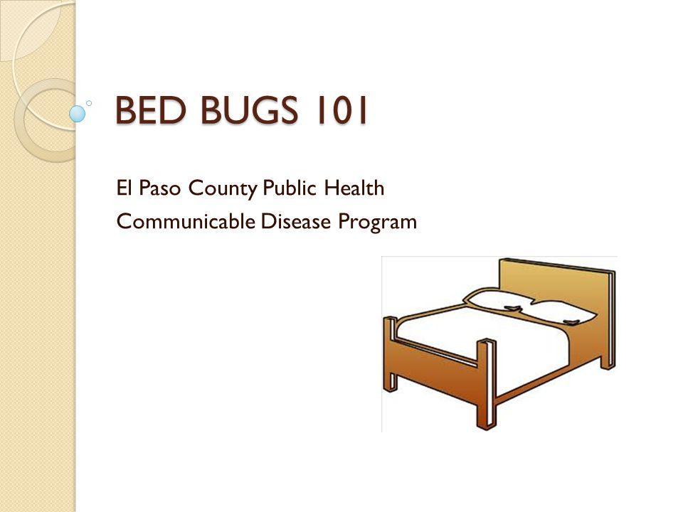BED BUGS 101 El Paso County Public Health Communicable Disease Program