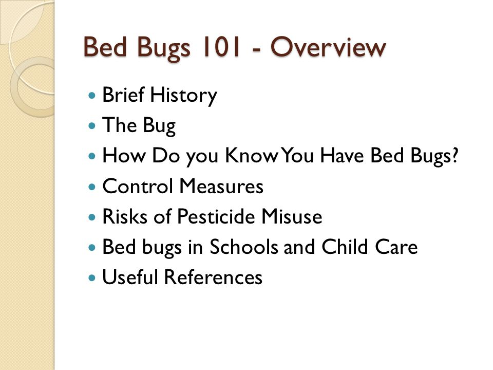 Bed Bugs 101 - Overview Brief History The Bug How Do you Know You Have Bed Bugs? Control Measures Risks of Pesticide Misuse Bed bugs in Schools and Ch