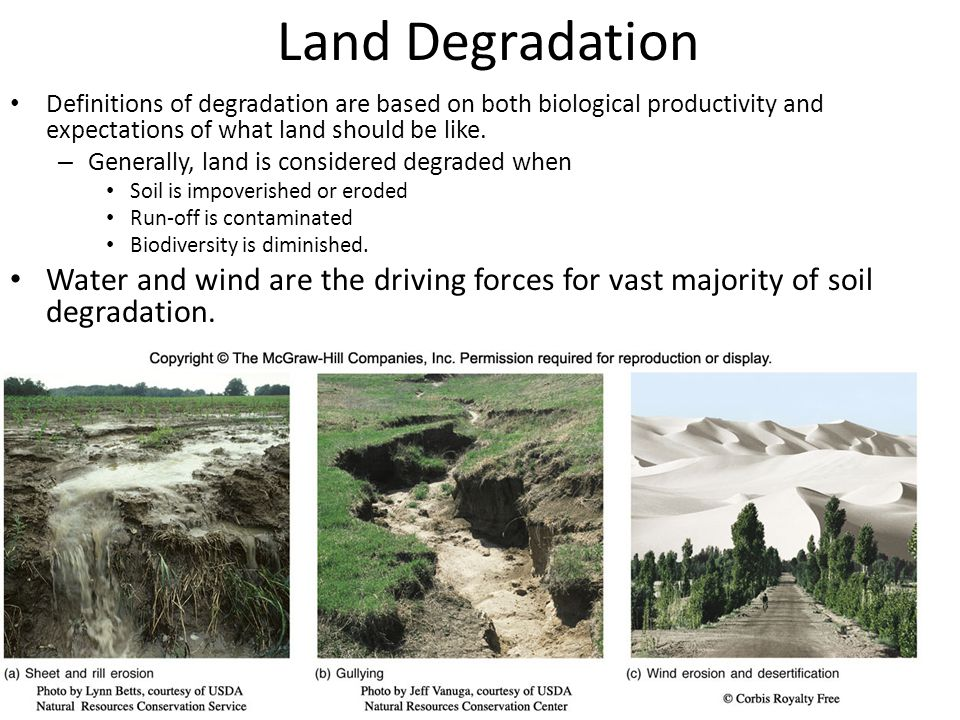 Land Degradation Definitions of degradation are based on both biological productivity and expectations of what land should be like. – Generally, land