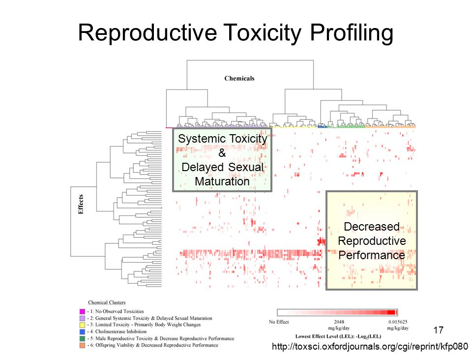 17 Reproductive Toxicity Profiling http://toxsci.oxfordjournals.org/cgi/reprint/kfp080 Systemic Toxicity & Delayed Sexual Maturation Decreased Reproductive Performance