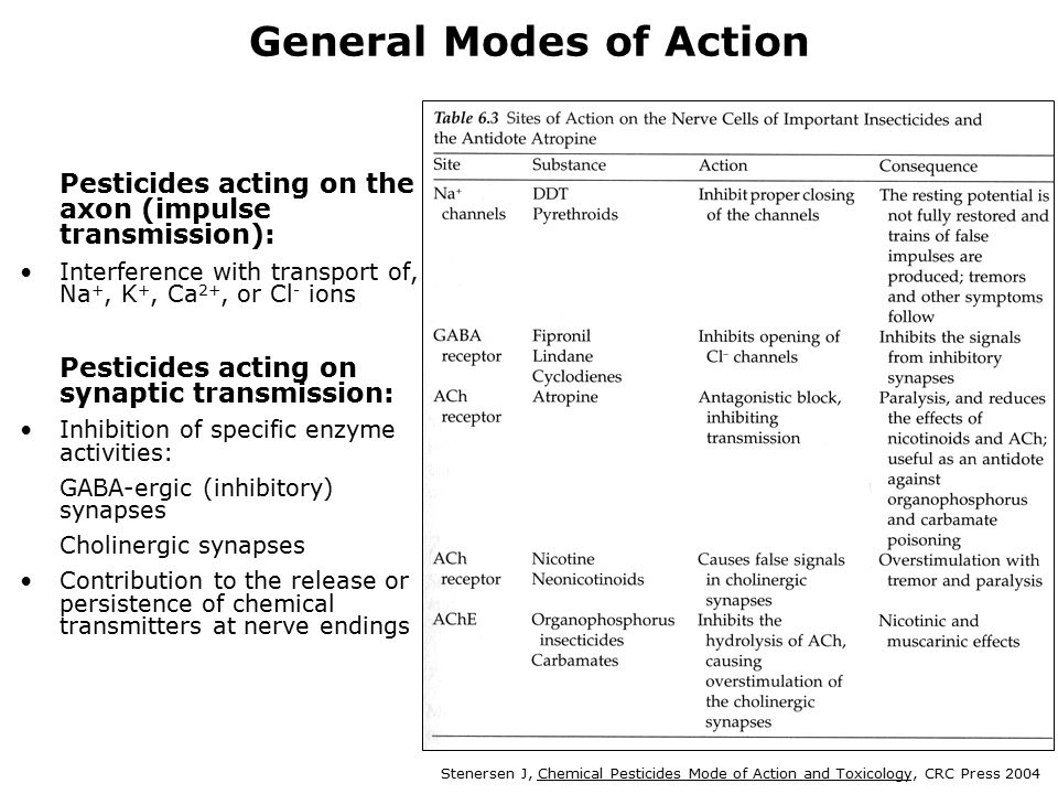 38 General Modes of Action Pesticides acting on the axon (impulse transmission): Interference with transport of, Na +, K +, Ca 2+, or Cl - ions Pesticides acting on synaptic transmission: Inhibition of specific enzyme activities: GABA-ergic (inhibitory) synapses Cholinergic synapses Contribution to the release or persistence of chemical transmitters at nerve endings Stenersen J, Chemical Pesticides Mode of Action and Toxicology, CRC Press 2004