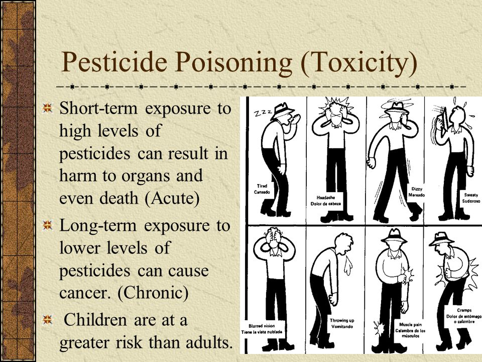 Pesticide Poisoning (Toxicity) Short-term exposure to high levels of pesticides can result in harm to organs and even death (Acute) Long-term exposure