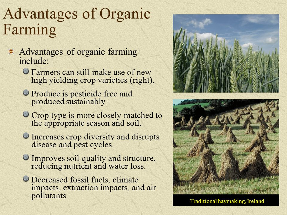 Advantages of Organic Farming Traditional haymaking, Ireland Advantages of organic farming include: Farmers can still make use of new high yielding cr