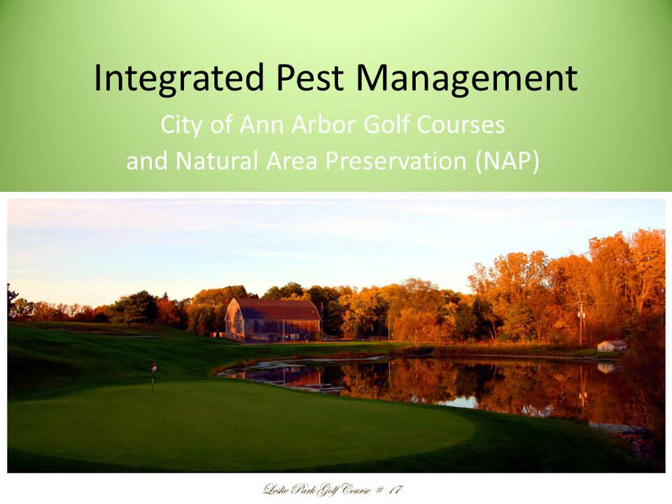 Integrated Pest Management Employ Sound Cultural Practices to Promote Plant Health Select Thresholds for Acceptable and Unacceptable Levels of Pest Injury Scout and Monitor Potential Pest Populations Accurately Identify the Problem and Choose the Best Management Strategy Proper Timing for Treatment Methods