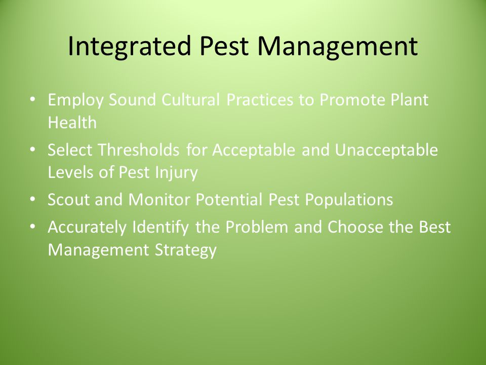 Integrated Pest Management Employ Sound Cultural Practices to Promote Plant Health Select Thresholds for Acceptable and Unacceptable Levels of Pest Injury Scout and Monitor Potential Pest Populations Accurately Identify the Problem and Choose the Best Management Strategy