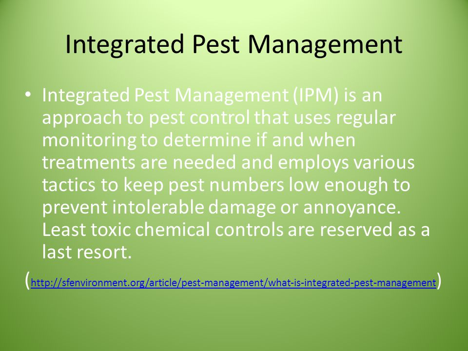 Integrated Pest Management Employ Sound Cultural Practices to Promote Plant Health Select Thresholds for Acceptable and Unacceptable Levels of Pest Injury Scout and Monitor Potential Pest Populations Accurately Identify the Problem and Choose the Best Management Strategy Proper Timing for Treatment Methods Evaluate Results and Keep Records