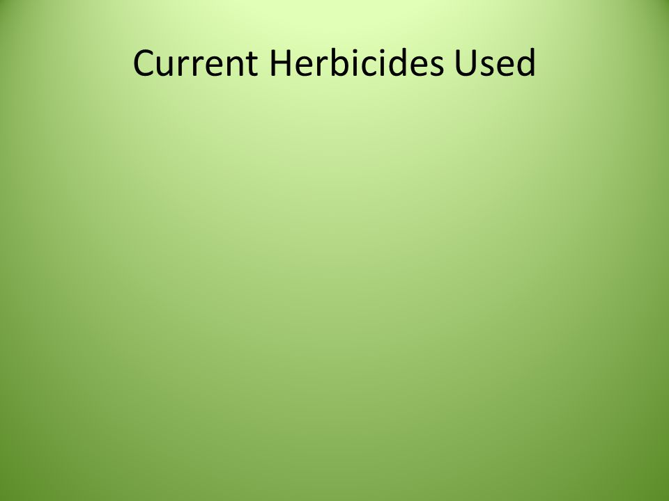 Current Herbicides Used