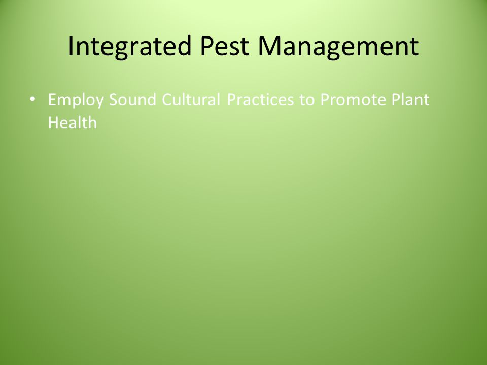 Integrated Pest Management Employ Sound Cultural Practices to Promote Plant Health Select Thresholds for Acceptable and Unacceptable Levels of Pest Injury