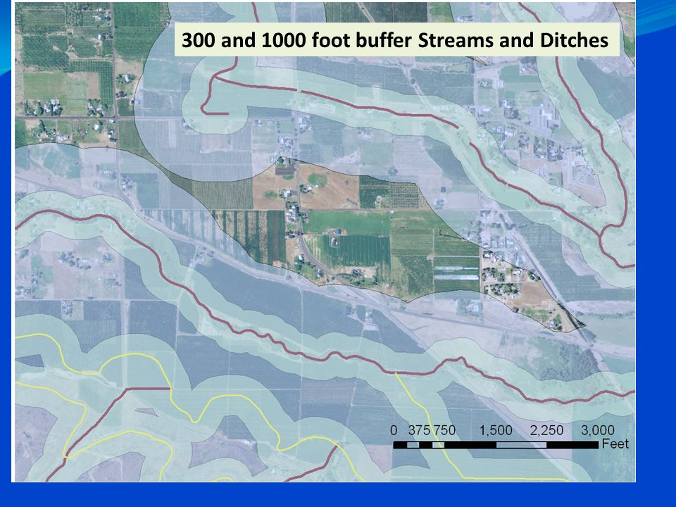 300 and 1000 foot buffer Streams and Ditches