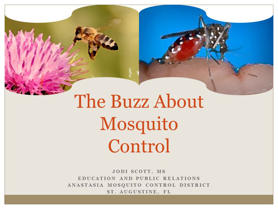 JODI SCOTT, MS EDUCATION AND PUBLIC RELATIONS ANASTASIA MOSQUITO CONTROL DISTRICT ST.