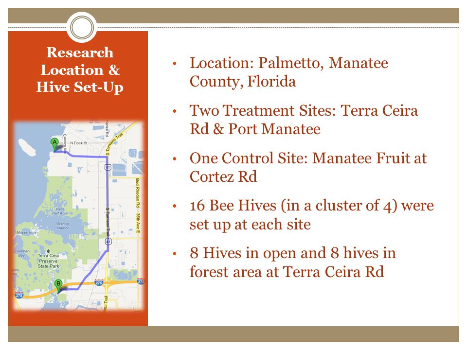 Research Location & Hive Set-Up Location: Palmetto, Manatee County, Florida Two Treatment Sites: Terra Ceira Rd & Port Manatee One Control Site: Manatee Fruit at Cortez Rd 16 Bee Hives (in a cluster of 4) were set up at each site 8 Hives in open and 8 hives in forest area at Terra Ceira Rd